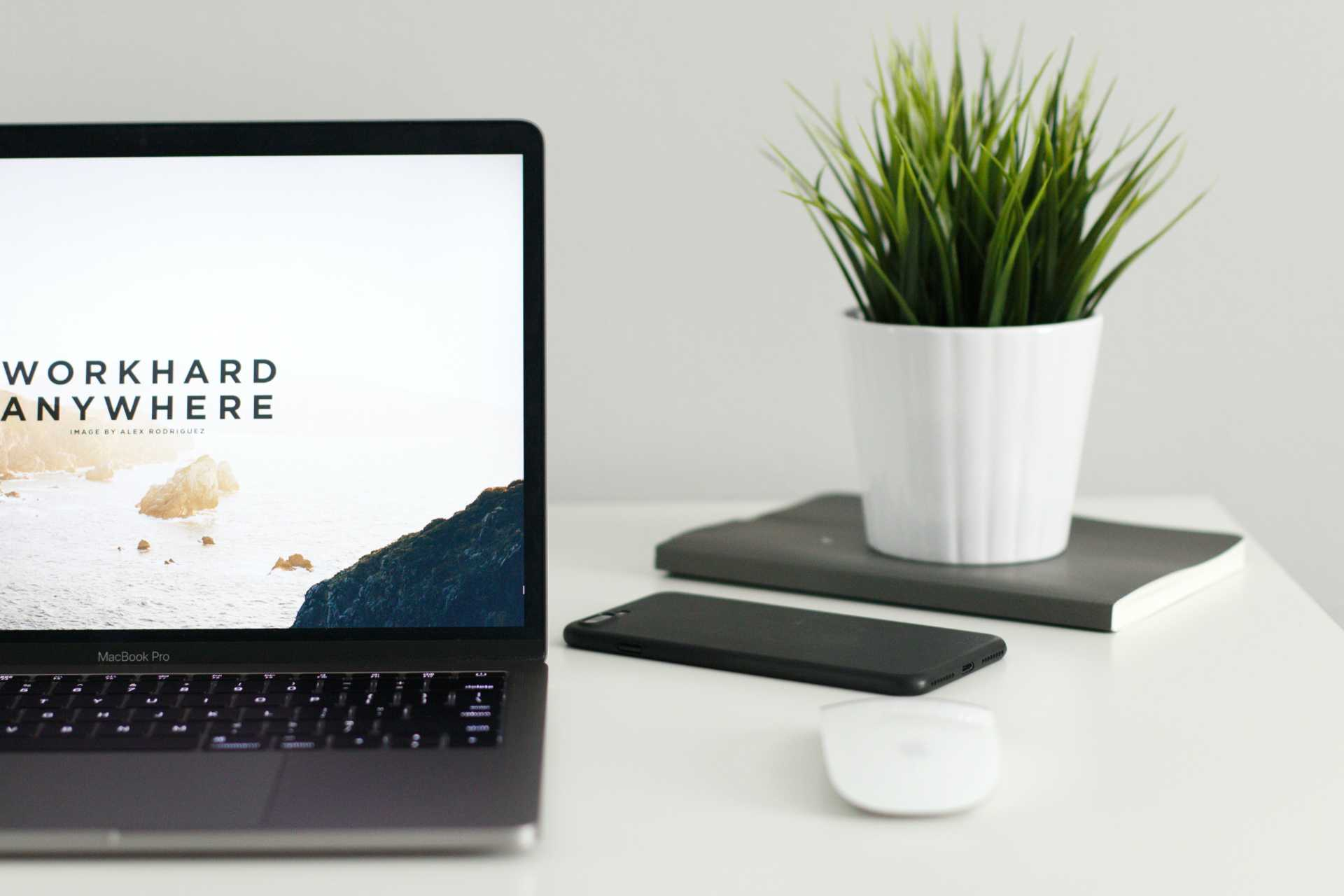 Bilan de compétences | Alfa Conseil Créativité